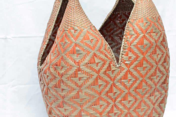 close up picture of golden orange and natural green cuatro tetas basket butterfly pattern