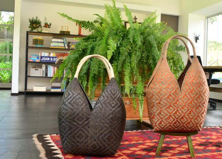 picture of two large cuatro tetas baskets featured in a living room in front of a large fern plant sitting on top of a decorative rug