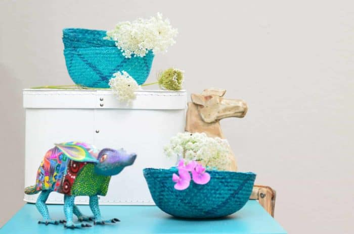 Kiskadee Design Image with Product being Used of a teal with blue weave Small decorative iraca basket by the artisans in Sandona Narino