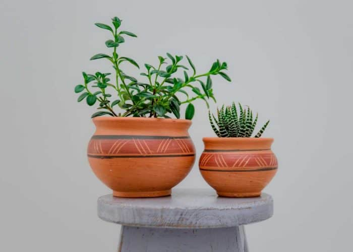Kiskadee Design Front View Image of a Made in Raquira Round Muisca pot set Natural clay, made in Colombia
