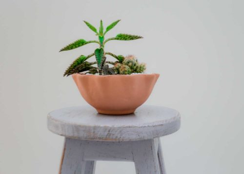 Kiskadee Design Catalogue Image of a Wavy delicate handmade wide pot Desert rose clay pot Natural clay, Made in El carmen de viboral