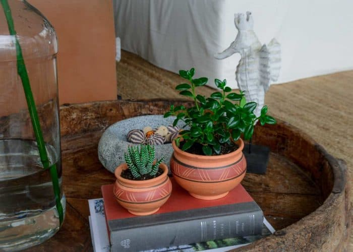Kiskadee Design Image with Product being Used of a Made in Raquira Round Muisca pot set Natural clay, made in Colombia