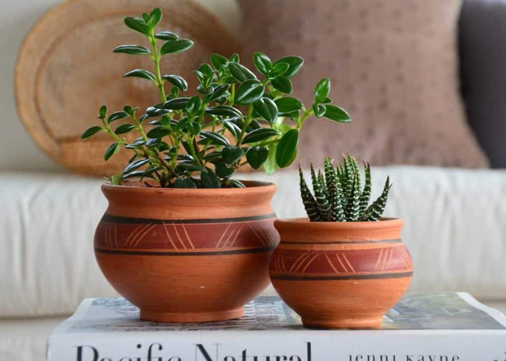 Kiskadee Design Catalogue Image of a Various handmade natural clay pots, Natural clay, made in Colombia
